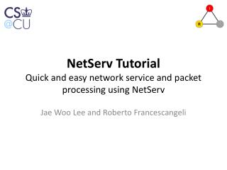 NetServ Tutorial Quick and easy network service and packet processing using  NetServ