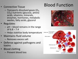 Blood Function