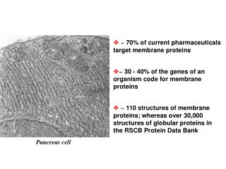 ? ~ 30 - 40% of the genes of an organism code for membrane proteins