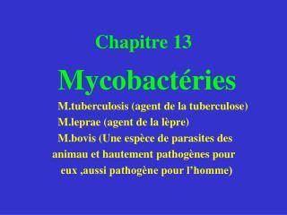 Chapitre 13  Mycobactéries M.tuberculosis (agent de la tuberculose)