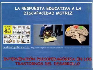 LA RESPUESTA EDUCATIVA A LA DISCAPACIDAD MOTRIZ