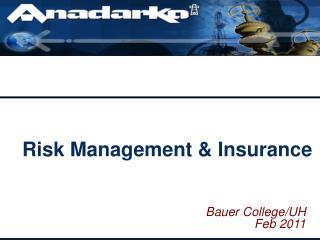Risk Management  Insurance