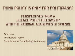 Amy Hein Postdoctoral Fellow Department of Neurobiology & Anatomy