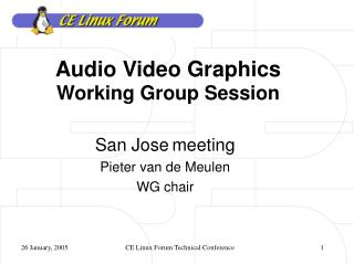 Audio Video Graphics Working Group Session