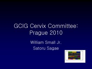 GCIG Cervix Committee:  Prague 2010