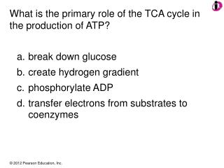 What is the primary role of the TCA cycle in the production of ATP?