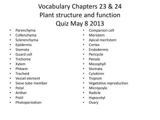 Vocabulary Chapters 23 & 24 Plant structure and function Quiz  May 8 2013