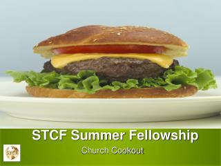 STCF Summer Fellowship