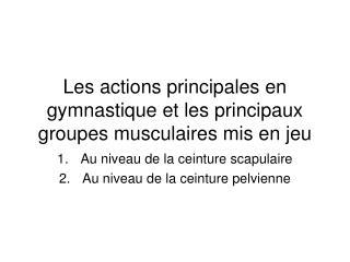 Les actions principales en gymnastique et les principaux groupes musculaires mis en jeu