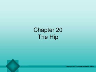Chapter 20 The Hip