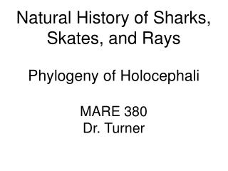 Natural History of Sharks, Skates, and Rays Phylogeny of Holocephali MARE 380 Dr. Turner