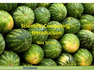 Scientific Computing -  Introduction