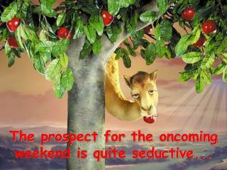 The prospect for the oncoming weekend is quite seductive...