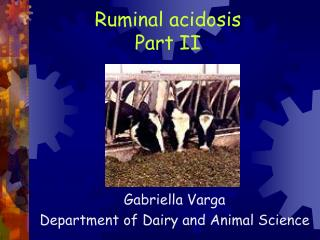 Ruminal acidosis Part II