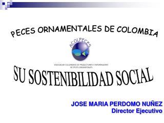 JOSE MARIA PERDOMO NUÑEZ Director Ejecutivo
