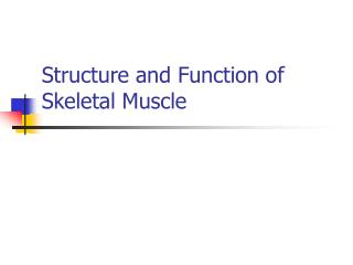 Structure and Function of Skeletal Muscle
