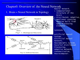 Chapter0. Overview of  the Neural Network