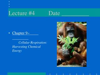 Lecture #4Date _________