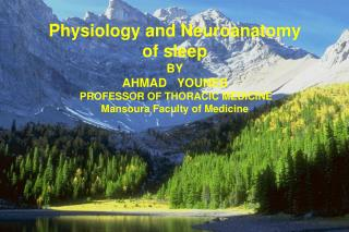 Physiology and Neuroanatomy  of sleep  BY AHMAD   YOUNES PROFESSOR OF THORACIC MEDICINE