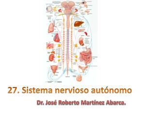 27.  Sistema nervioso autónomo