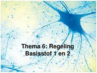 Thema 6: Regeling Basisstof 1 en 2