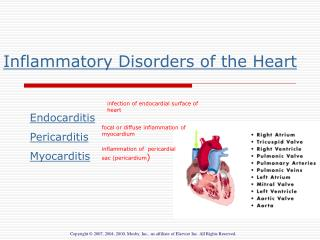 Inflammatory Disorders of the Heart