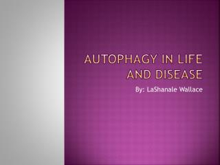Autophagy  In Life and Disease