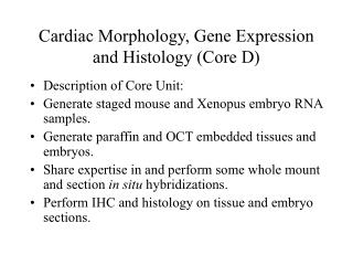 Cardiac Morphology, Gene Expression and Histology (Core D)
