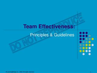 Team Effectiveness:
