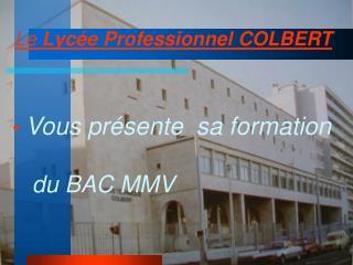 Vous présente  sa formation  du BAC MMV