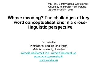 Whose meaning? The challenges of key word conceptualisations in a cross-linguistic perspective