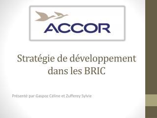 Stratégie de développement dans les BRIC