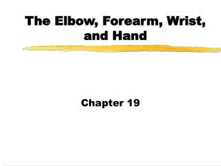 The Elbow, Forearm, Wrist, and Hand