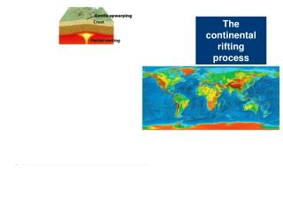 The continental rifting process