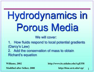 Hydrodynamics in Porous Media