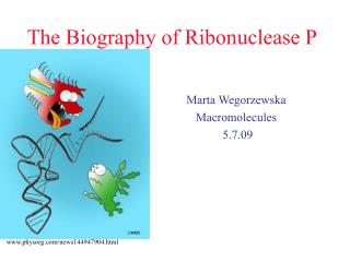 The Biography of Ribonuclease P