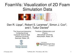 FoamVis: Visualization of 2D Foam Simulation Data