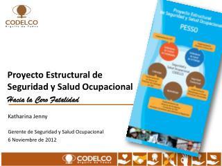 Proyecto Estructural de Seguridad y Salud Ocupacional