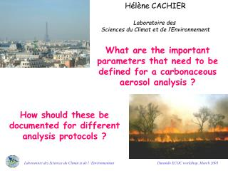 What are the important parameters that need to be defined for a carbonaceous aerosol analysis ?