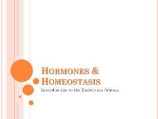 Hormones & Homeostasis