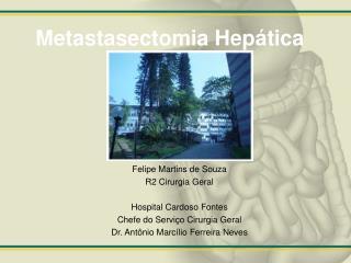 Metastasectomia Hep�tica