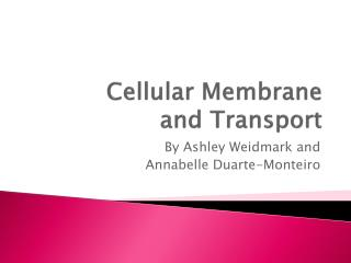 Cellular Membrane and Transport