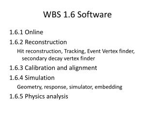 WBS 1.6 Software