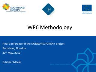 WP6  Methodology
