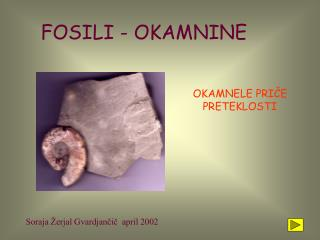 FOSILI - OKAMNINE