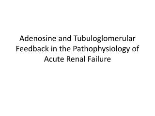 Adenosine and Tubuloglomerular Feedback in the Pathophysiology of Acute Renal Failure