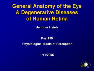 General Anatomy of the Eye  & Degenerative Diseases  of Human Retina