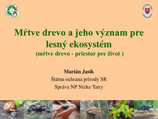 Mŕtve drevo a jeho význam pre lesný ekosystém  (mŕtve drevo - priestor pre život )