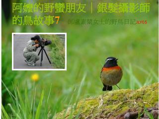 阿嬤的野蠻朋友|銀髮攝影師的鳥故事 7 邱盧素蘭女士的野鳥日記 JLY05