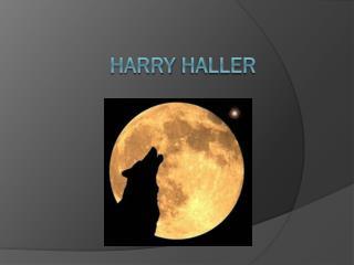 Harry  Haller